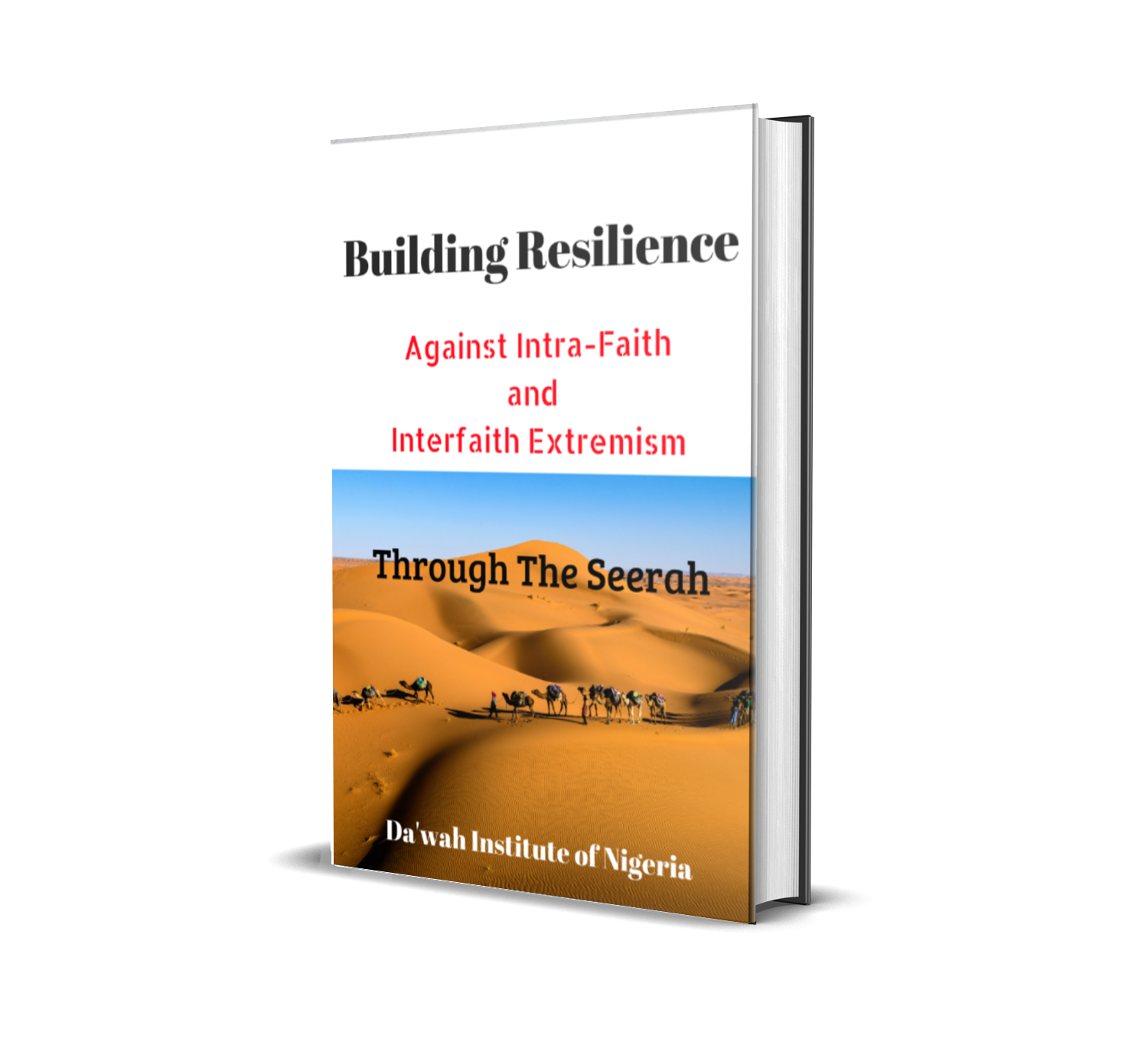 https://dawahinstitute.org/wp-content/uploads/Building-Resilience.png